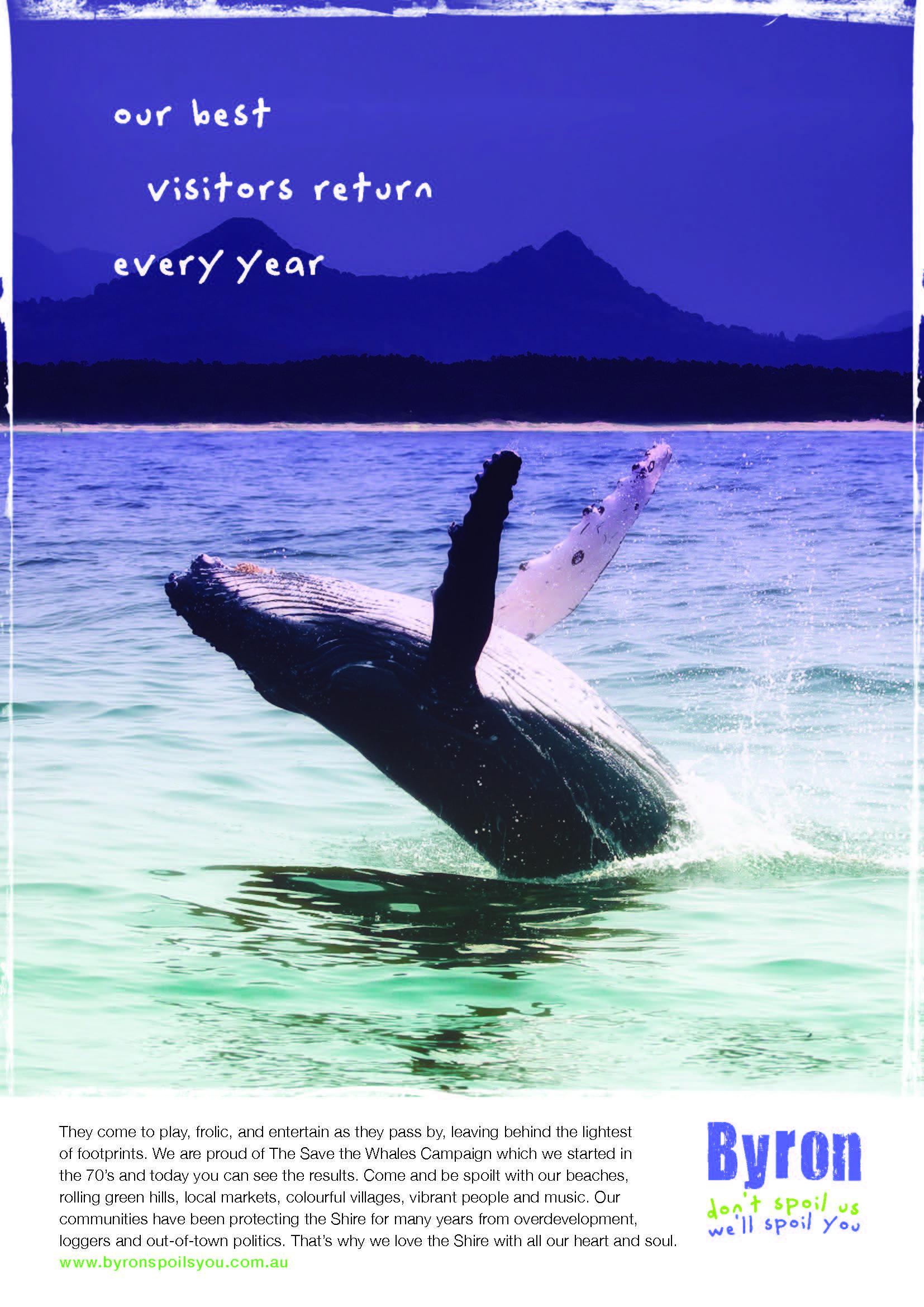 Byron whale