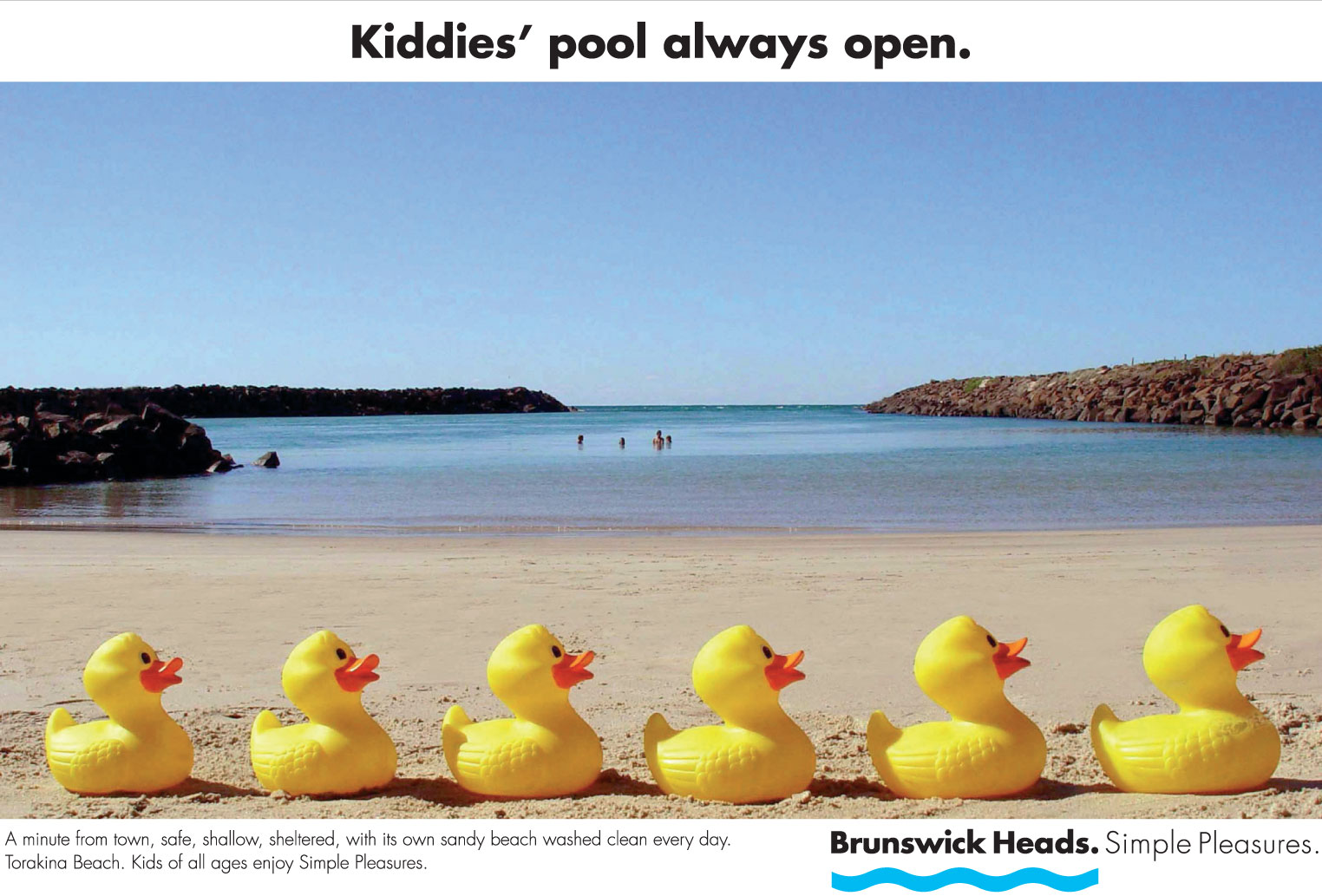 Ducks on beach
