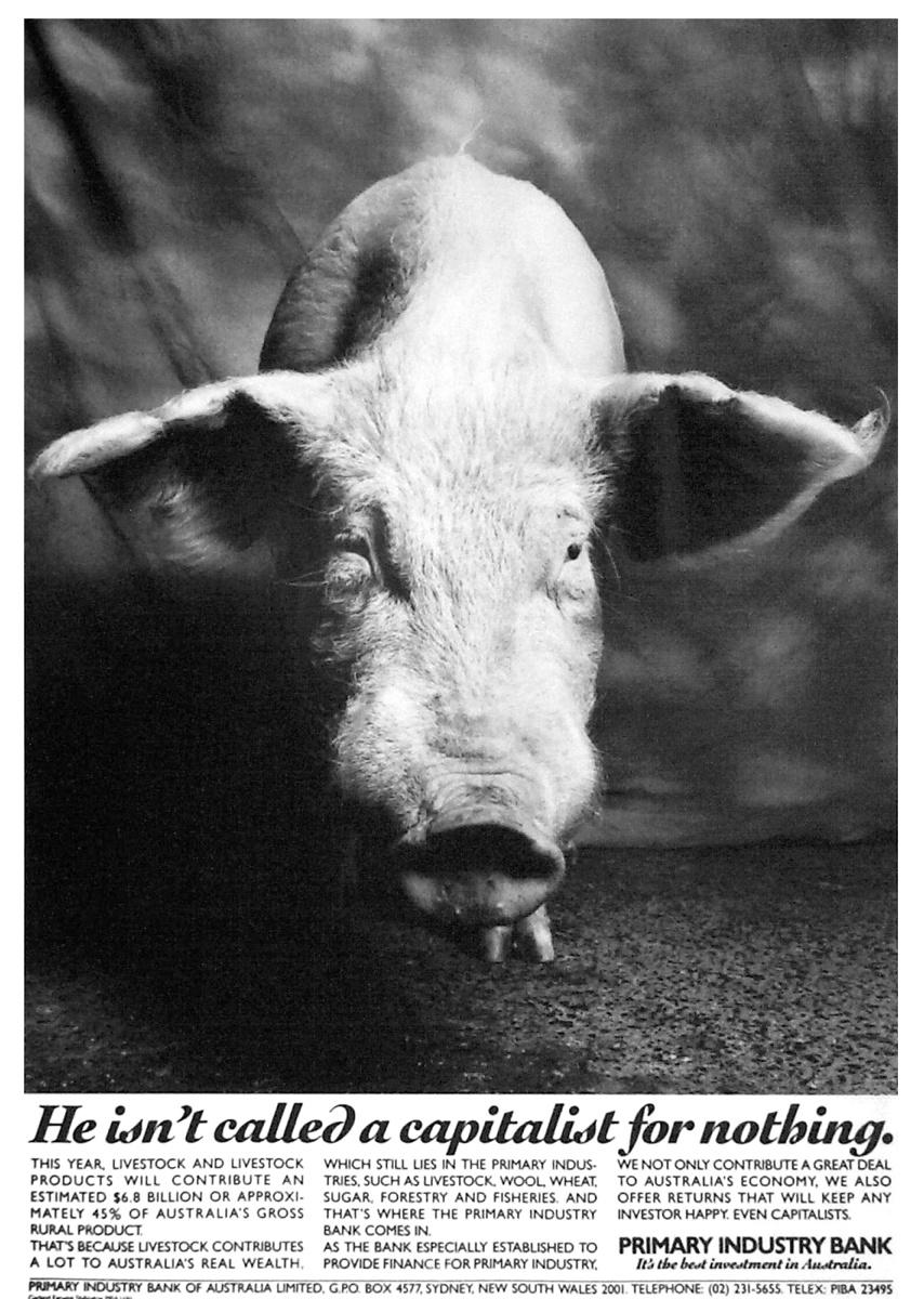 PI Pig