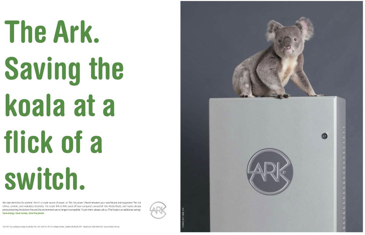 ark koala